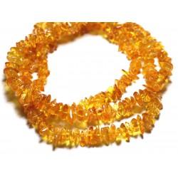 20pc - Perles Ambre naturelle Miel - Rocailles Chips 6-10mm - 4558550087683