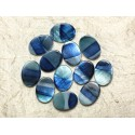 Painted Mother of Pearl Beads