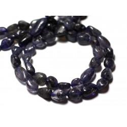 10pc - Perles de Pierre - Iolite Cordiérite Olives 7-14mm - 8741140011656
