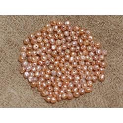 Perles de Culture 2 mm Roses - Sac de 20pc 4558550036667