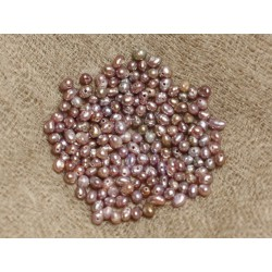 Perles de Culture 2 mm Parmes - Sac de 20pc 4558550037367