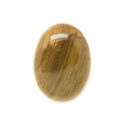 N1 - Cabochon de Pierre - Bois Fossile Ovale 29x21mm - 8741140006164