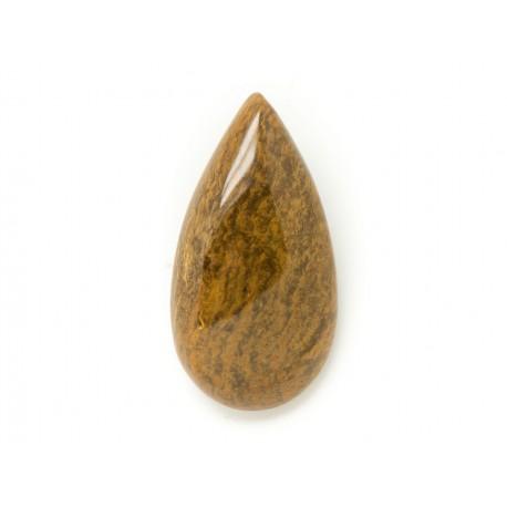 N16 - Cabochon de Pierre - Bois Fossile Goutte 44x26mm - 8741140006317