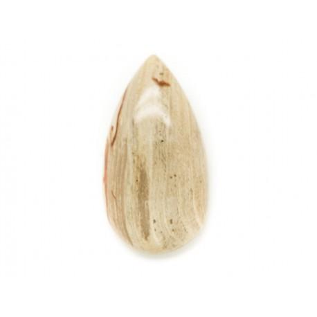 N17 - Cabochon de Pierre - Bois Fossile Goutte 36x18mm - 8741140006324