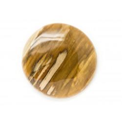 N23 - Cabochon de Pierre - Bois Fossile Rond 40mm - 8741140006386