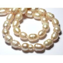 10pc - Perles culture eau douce Olives 8-12mm Blanc irisé - 7427039729444