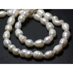 Fil 37cm 56pc env - Perles culture eau douce Olives 5-7mm blanches